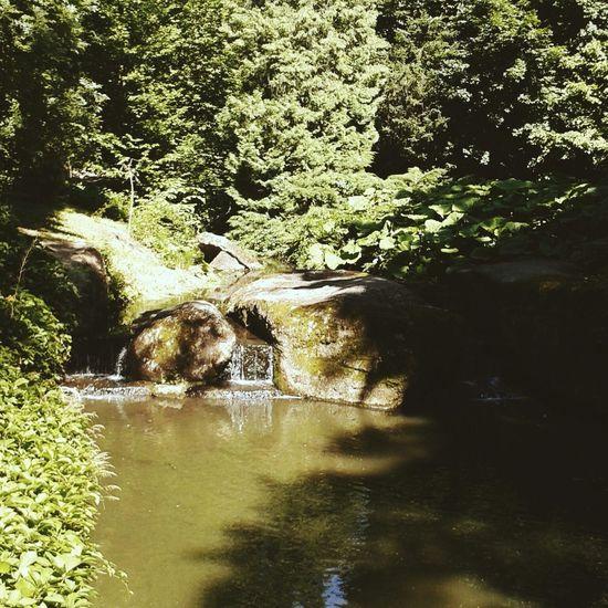 умань красота моя любимая Природа Софіївка