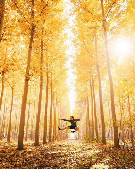 Karate kid at heart. Fall Tree Forest Plant Land Autumn Nature One Person Lifestyles Beauty In Nature Men Plant Part Leaf Sunlight Change Outdoors Leisure Activity Adult WoodLand Transportation Tranquility