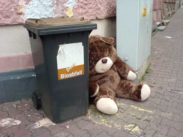 Bioabfall Bioabfall Biowaste Bürgersteig Garbage Garbage Can Mülltonne Outdoors Sidewalk Street Teddy Trash Trashcan Waste