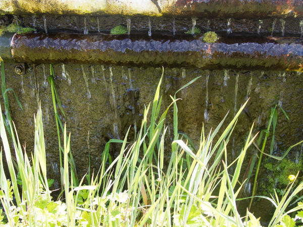 Water leaking over the side of the concrete pipe Concrete Pipe Grass Leaking Pipe Water