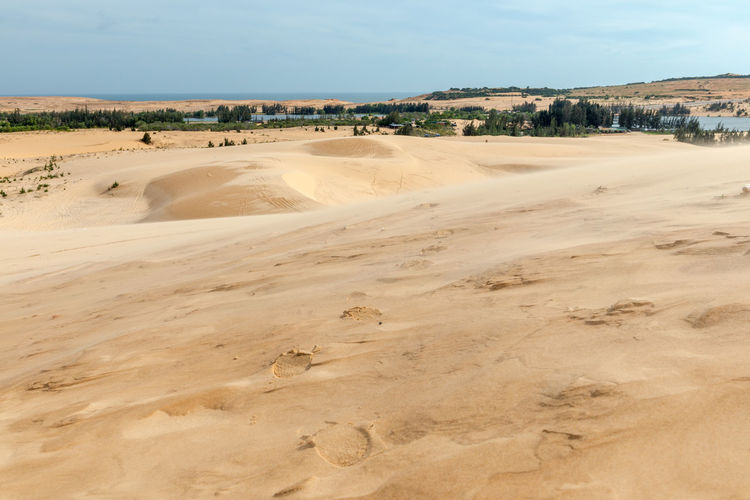 Sand dunes, Mui Ne South Vietnam Dec 2016 Arid Climate Beauty In Nature Day Desert Geology Landscape Nature No People Outdoors Physical Geography Sand Sand Dune Scenics Sky Sky, Vietnam, Arabia, Backgrounds, Blue, Travel, City, Cultures, Desert, Dessert, Dry, Heat – Temperature, Horizontal, Journey, Landscape, No People, Pattern, Binh Thuan Province, Indochina, Land, Mui Ne Bay, Natural, Outdoors, Panoramic, Photography, Red Tranquil Scene Tranquility