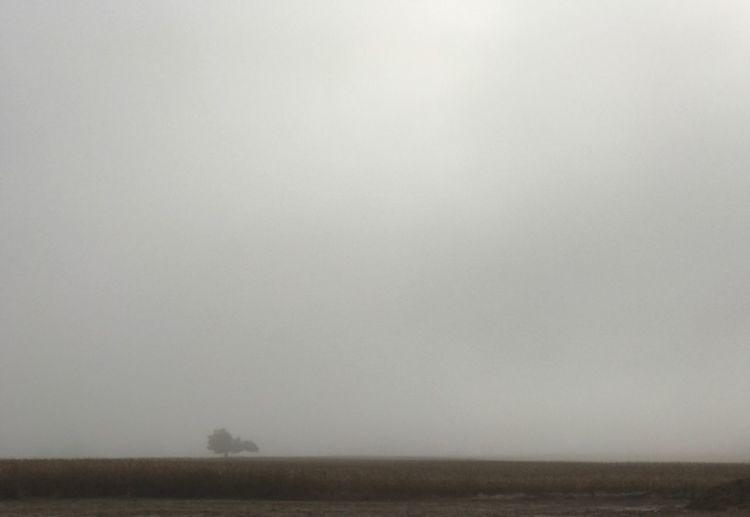 Alone. Fog No People Landscape Unedited IPhone Only Atmospheric Mood Backgrounds Fine Art Photography Misty Morning October Morning Morning Fog