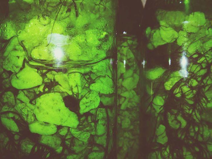 Rocks and glass