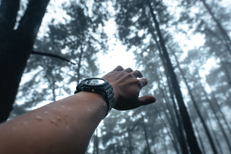 Low angle view of hand against blurred trees
