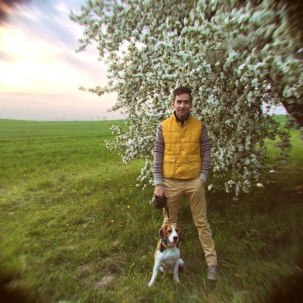 А когда яблони цветут... Aboutme Instadog Beagle