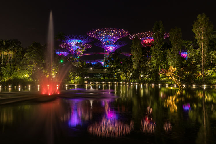 Gardens by the Bay, Singapore Dragonfly EyeEmNewHere Fountain Gardens By The Bay Lights Singapore SuperTree The Week On EyeEm Bay Garden Illuminated Illumination Lake Night No People Outdoors Reflection Sculpture Tree Water