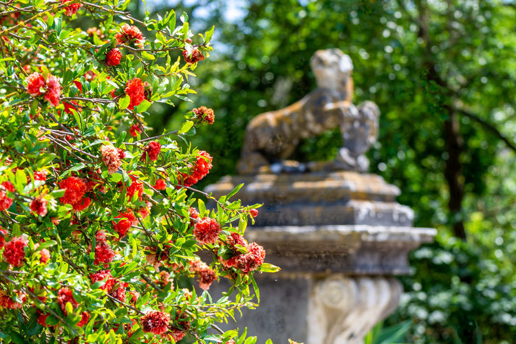 Statue of flowering plant against trees