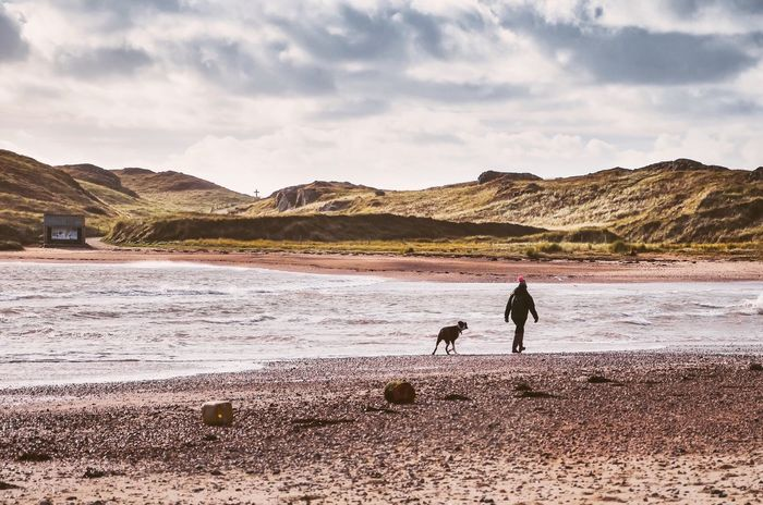 Magical Anglesey, north Wales. Beauty In Nature One Animal Walking Scenics Real People Wales Anglesey Snowdonia Natural Beauty Welshcoast British Coastline Coast Newborough Beach Solitude Mansbestfriend