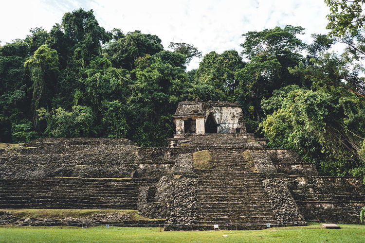 History Architecture The Past Plant Tree Built Structure Ancient Old Ruin Nature Old Travel Destinations Building Exterior Sky Tourism Travel Ancient Civilization Day No People Place Of Worship Archaeology Outdoors Ruined Maya Mayan Ruins