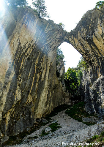 Beauty In Nature Clear Sky Day Geology Growth Landscape Low Angle View Nature No People Non-urban Scene Picos De Europa Rock - Object Rock Formation Rock Formation Rutadelcares Scenics Sky Sunlight Textured  Tranquil Scene Tranquility Travel Travel Destinations Tree