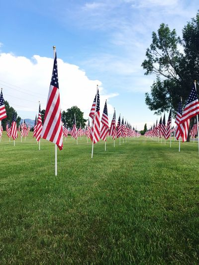 USA American Flags Patriotic Beautiful Cache Valley BATC Summertime Independence Day