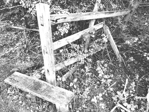Broken gate Wood - Material High Angle View Day No People Outdoors Close-up Nature