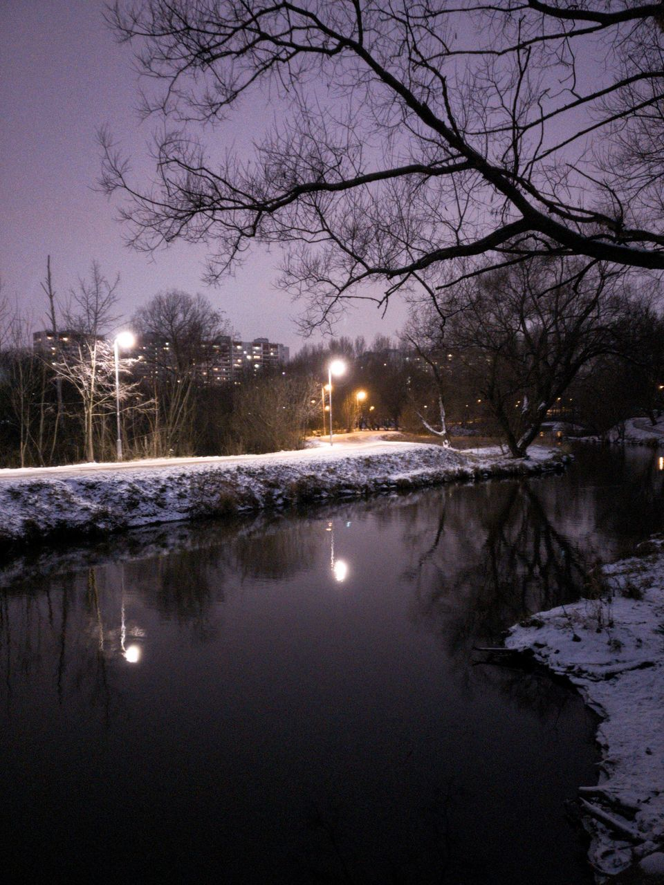 illuminated, night, winter, snow, reflection, bare tree, tree, cold temperature, nature, water, moon, beauty in nature, frozen, sky, outdoors, no people, lake, scenics, branch, star - space, astronomy