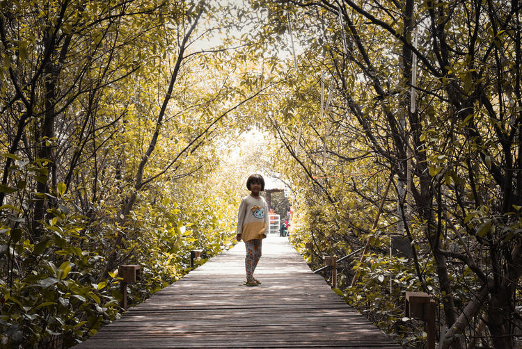 Tree Full Length Plant One Person Real People Leisure Activity Nature Day Women Lifestyles Direction Adult Footpath Rear View Casual Clothing Walking Branch Young Adult The Way Forward Outdoors Springtime Change Hairstyle