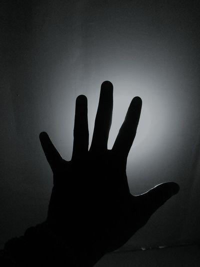 High Five! Finger Humanbody Art HumanArt Anatomy Fivefingers Lights Neon