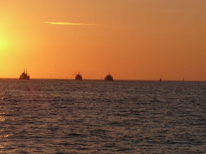 Fishing Boat Journey Nautical Vessel Non-urban Scene Ocean Orange ColorTranquil Scene Scenics Sea Seascape Sun Sunrise Sunrise_Collection Tranquility Transportation Vibrant Color Horizon Over Water Nature