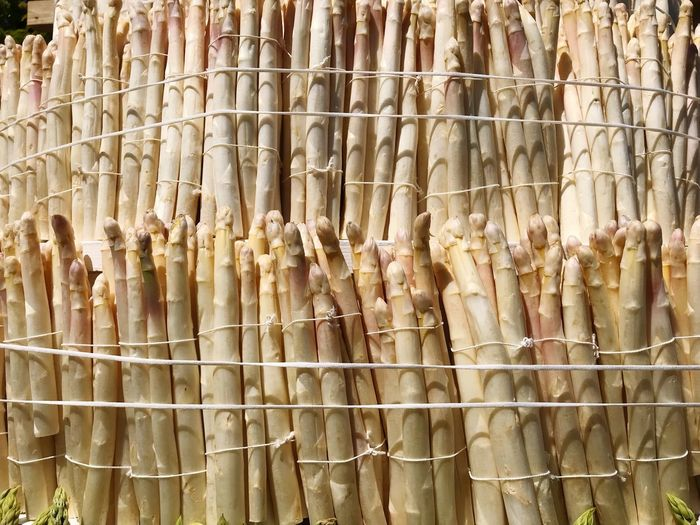 Bundles of white asparagus Farmers Market Bundles White Asparagus Asparagus Full Frame Backgrounds No People Day Large Group Of Objects Pattern Abundance Textured  Close-up Nature Outdoors Repetition Arrangement