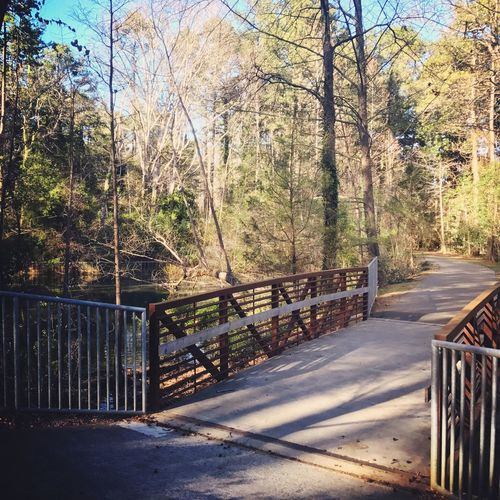 Trail Trail Running Nature Bridge
