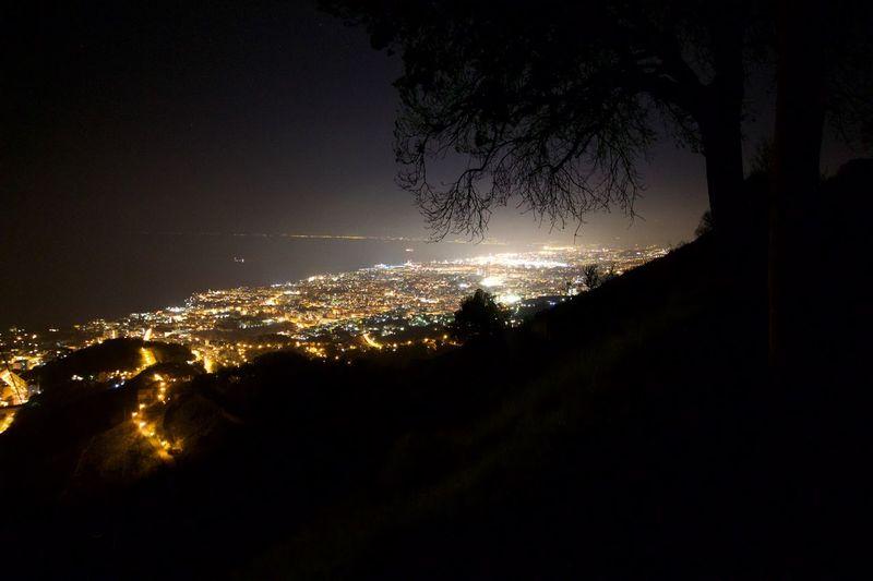 Genova Montefasce Tree Albero Notte Luci Lights Night