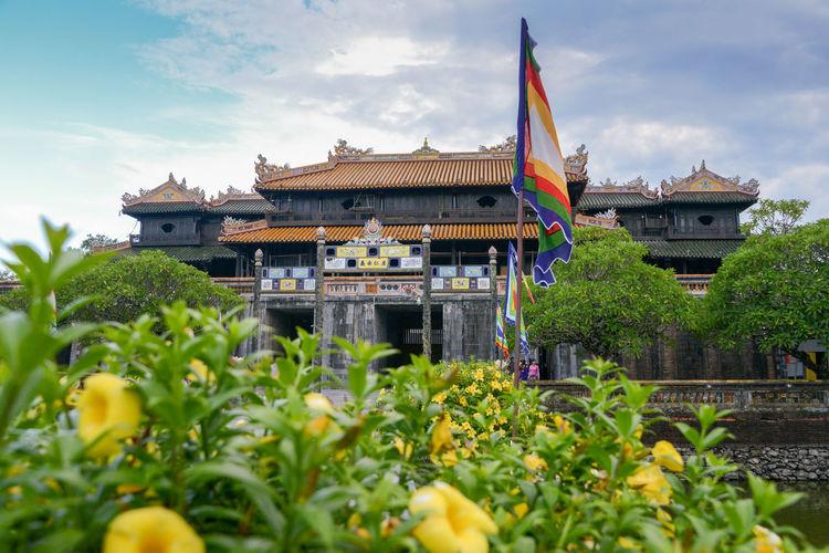 Hue's Imperial Enclosure Vietnam Co Ha Huế Imperial Ngo Mon Vietnam Enclosure Temple Temple - Building Vietnam Travel Vietnam Trip Vietnamphotography Vietnamtravel Yellow Flowers