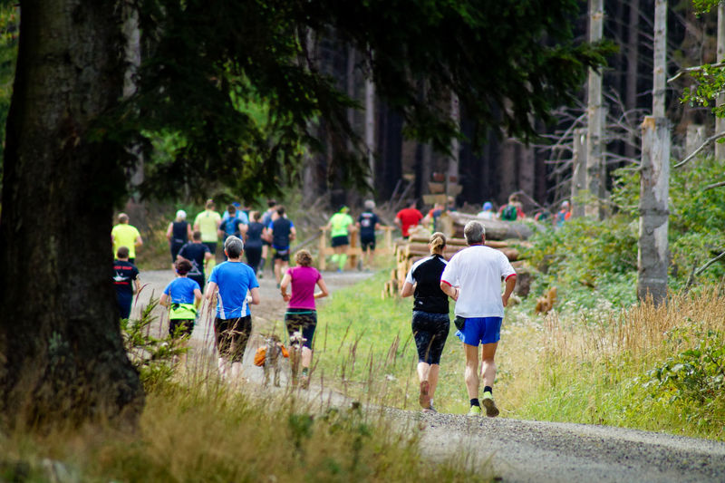 Rear View Of People Running Amidst Trees During Sports Race