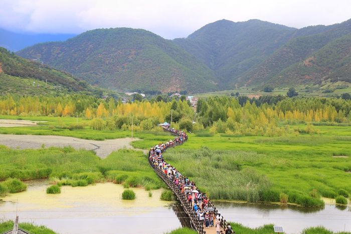 Mountain Water Nature Lake Scenics Beauty In Nature Outdoors Landscape Tranquil Scene Tree Green Color Sky Mountain Range Tranquility Day No People Nautical Vessel Rice Paddy 走婚桥