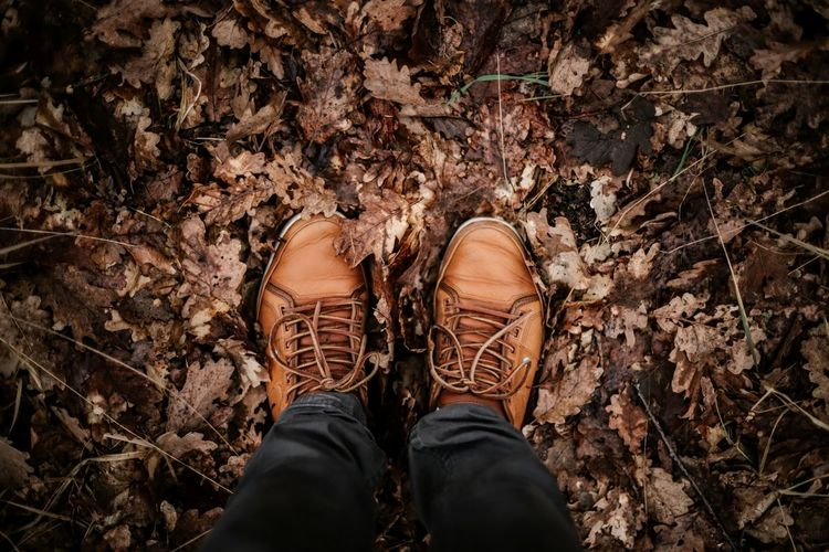 Autumn Autumn Colors Brandenburg Brown Footwear High Angle View Lifestyles Shoe Woods