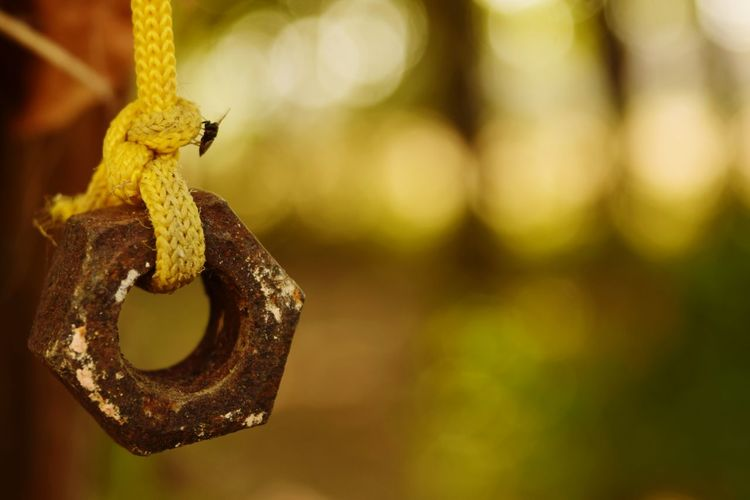 Close-up of rusty nut hanging outdoors