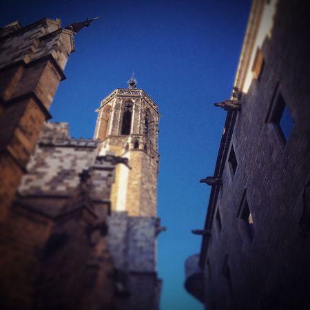 La catedral...