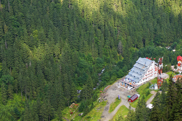 Aerial View Of Hotel Amidst Trees