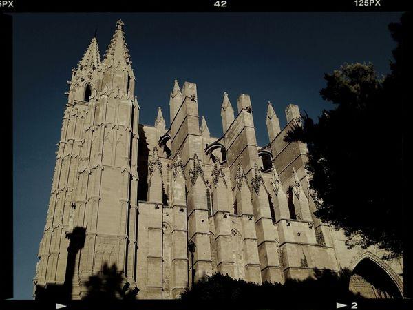 Catedral De Palma De Mallorca  Catedral