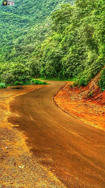 Old road on the countryside 🇮🇳 Day No People Outdoors High Angle View Sand Nature Tree Grass Wanderlust Eyeemphotography Freshness Traveldiary2017 Travelgrams Beauty In Nature Landscape Nature Lifestyles Nomad EyeEm Motorcycle Photography Highwayphotography Growth Leisure Activity Motorcycle Highways&Freeways Bikelife