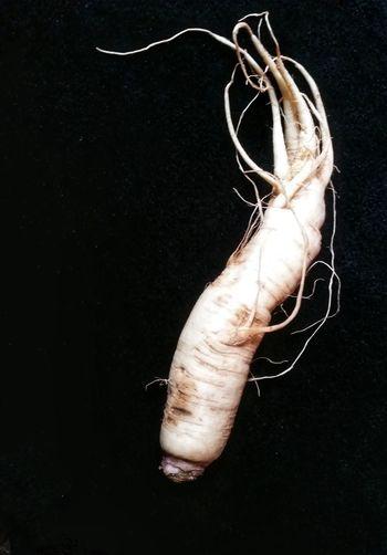 Turnip...