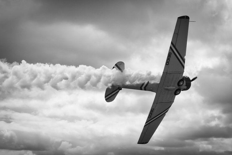 Geico skytypers snj-2 ww2 trainer banking left. Aviation Airplane Ww2warbirds Airtoair The Photojournalist - 2016 EyeEm Awards