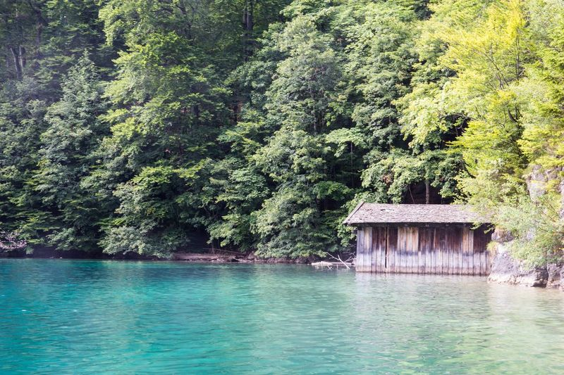 Natural colours. EyeEmNewHere Nature House Lake Lakeview Tranquility Beauty In Nature Trees Canon_photos Canon6d Traveling Travel Photography Alpsee Followme Follow4follow Germany Landscape EyeEm Nature Lover Green Color