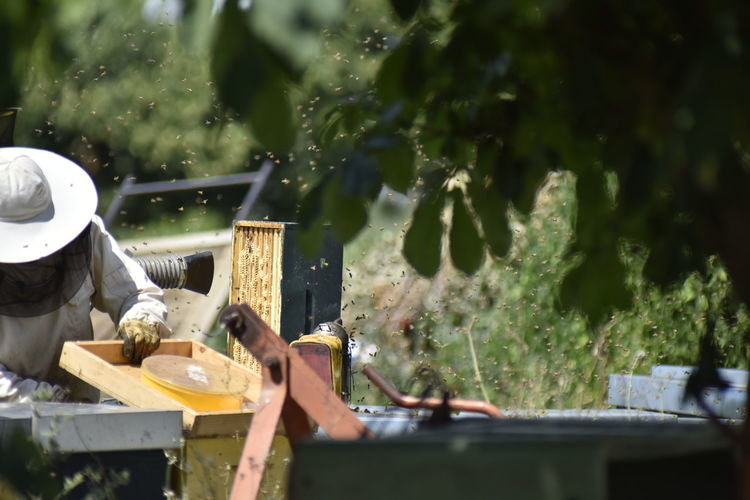 Man working on plant in yard