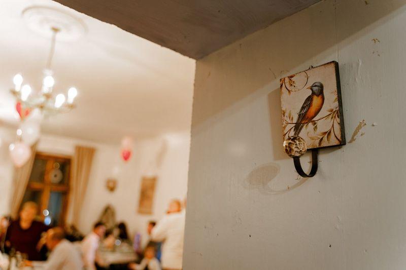Light bulbs hanging on wall at home