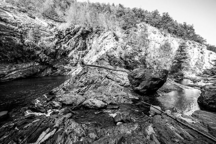 Tree Plant Water Beauty In Nature Scenics - Nature Nature No People Rock Flowing Water Outdoors Cascata Del Golfarone Villa Minozzo Waterfall Lake Landscape Wideangle Tranquility Blackandwhite Black And White Forset Power In Nature