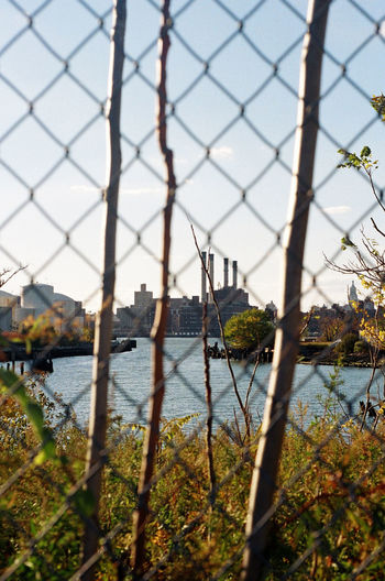 Brooklyn Chainlink Fence City Day Industrial Industrial Landscapes Nature Plant Sky Sunlight Sunny Day Tranquility Urban Nature Water Waterfront