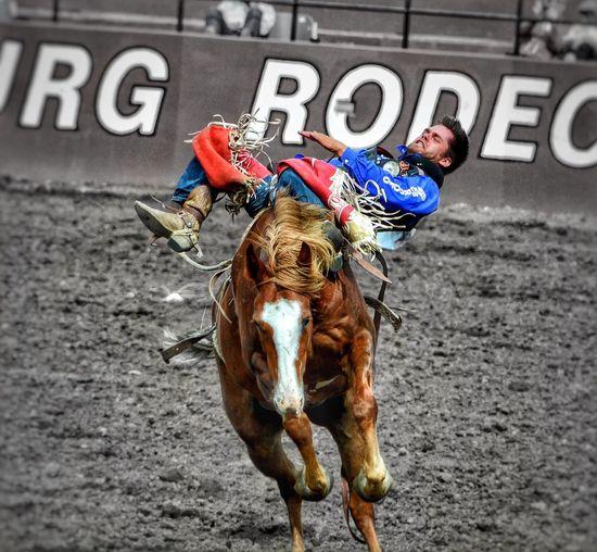 Ellensburg Rodeo Washington Cowboys Riding Horseback Riding One Animal Horse Nikon D3100