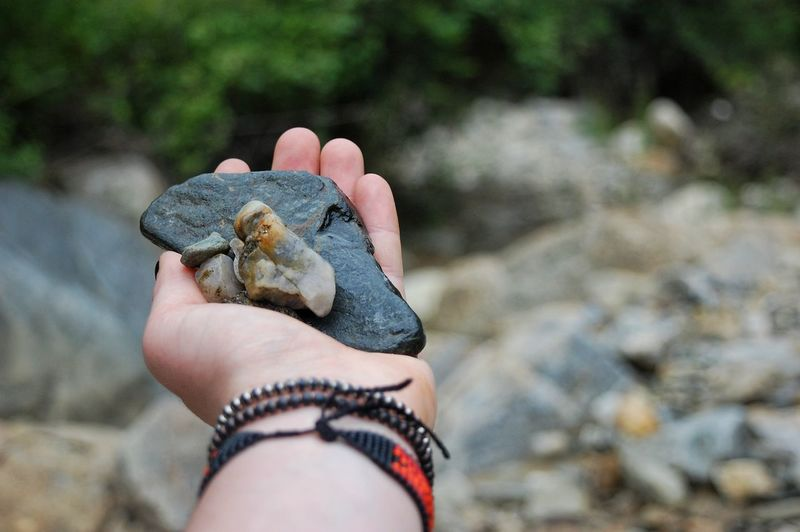 Close-up of hand holding big river rocks