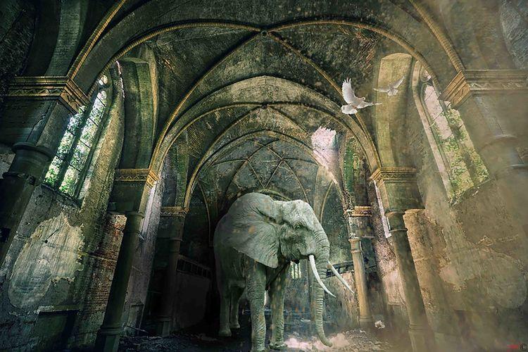 Artdigital Photoshop Fantasy My Artwork Surrealist Art Poesie Church Church Architecture Statue Sculpture Elephant African Elephant