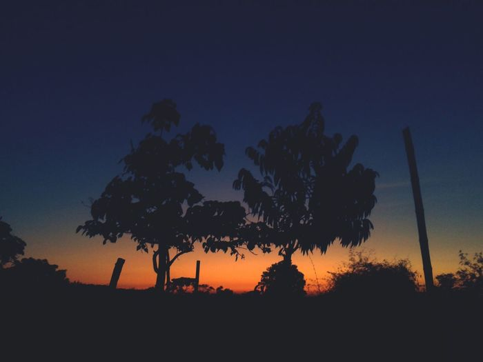 Two plus one Eyeem Philippines Sunset Silhouettes Nature_collection EyeEm