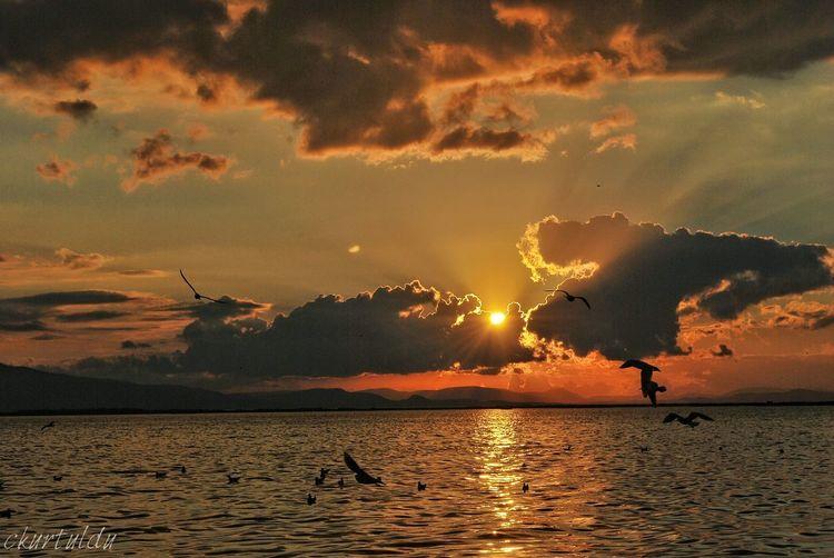 View Sea Sea And Sky Cloud Turkey Bostanlı Türkiye Izmir Cloudy Day View Like Amazing Night Shot Sunset Sea Beauty In Nature Nature Outdoors Silhouette Scenics Water Sky No People Night City