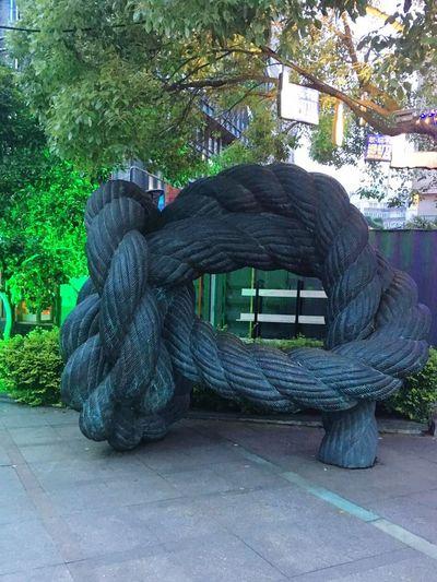 A Real Tree Branch...:O :O Jsut Amazed......=-O =-O