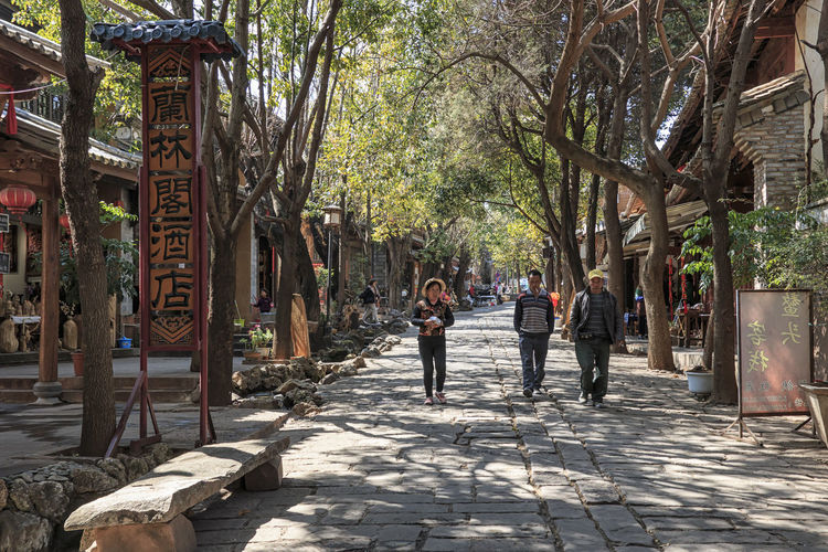 Shaxi, China - February 21, 2019: Chinese tourists walking in one of the streets of Shaxi old Town along the ancient Tea Horse Road (South Silk Road) Shaxi China ASIA Yunnan Yunnan ,China Market South Silk Road Tea Horse Road Minority Ethnic Group Old Town Kunming, China Landscape People Night Teather Old