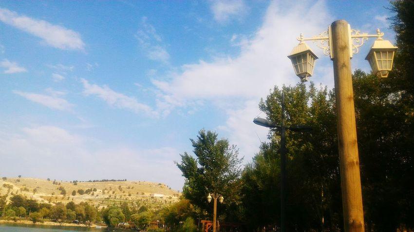 Malatya Orduzu Mavigökyüzü Blue Sky Agaclar Trees