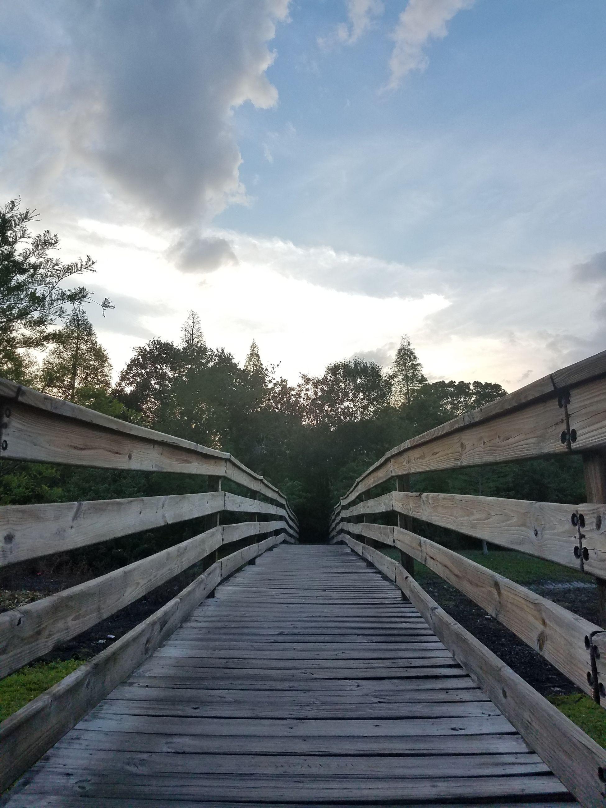 FOOTBRIDGE BY TREES AGAINST SKY