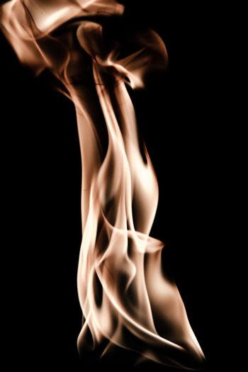 Flamemale Series II Beauty In Nature Black Background Burning Flame Orange Female Fire Photoart Studio Shot