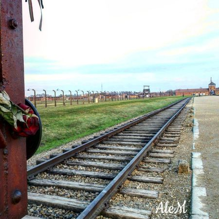 Never forget... The binary of death in Birkenau Railroad Track Rail Transportation Holocaust Memorial Holocaust Holocaust Remembrance Birkenau Birkenau Memorial Concentration Camp Memorial Day